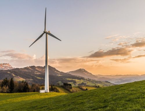 Supply Chains are Going Green in These Six Ways